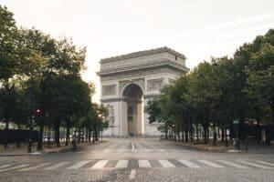 Paryż, drzewa