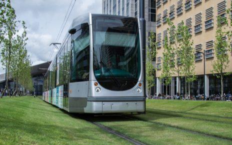 Tramwaj, transport publiczny